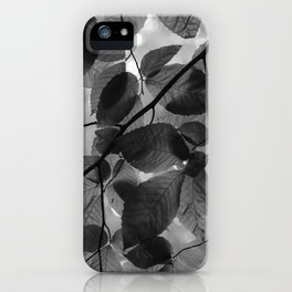 Looking up in the Woods iPhone Case