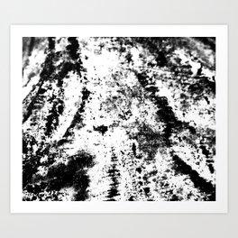Noir Blanc Art Print