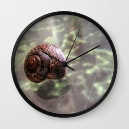 Snail on hard-to-eat lettuce - On glass-covered ad of vegetables Wall Clock