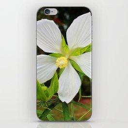 White Swamp Hibiscus iPhone Skin