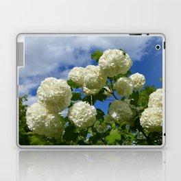Granny's Snowballs Laptop & iPad Skin