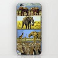 wildlife iPhone & iPod Skins featuring Wildlife by Karl-Heinz Lüpke