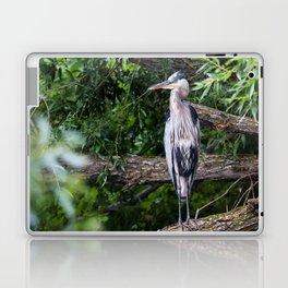 Heron waiting Laptop & iPad Skin