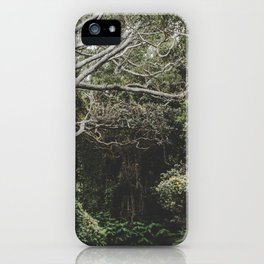 Jungle of Trees in Hilo, Hawaii iPhone Case