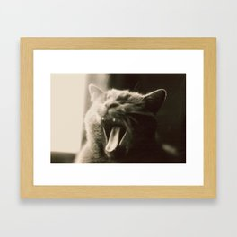 Kaspar Framed Art Print