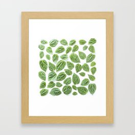 Leaves pattern (28) Framed Art Print
