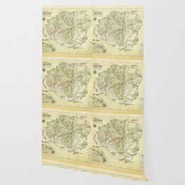 The Island of Kauai [vintage inspired] Topographic Map Wallpaper