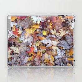 leaf litter menagerie Laptop & iPad Skin
