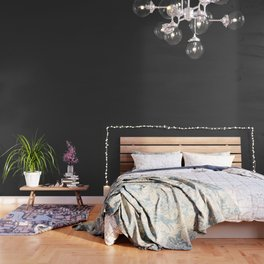Solid Caviar Black Color Wallpaper
