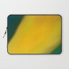 Joseluis Laptop Sleeve