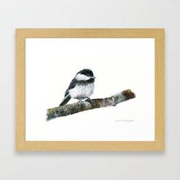 Black-capped Chickadee by Teresa Thompson Framed Art Print