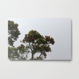 Lehua i ka pōuli o uka Metal Print