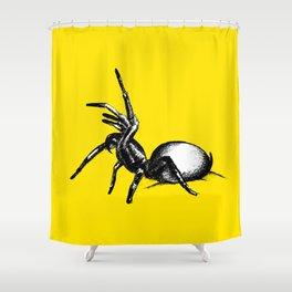 Sydney Funnel Web Shower Curtain