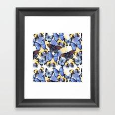 Pattern with butterflies Framed Art Print