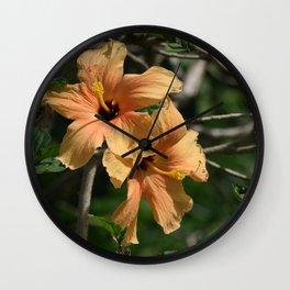 Orange Hibiscus Wall Clock