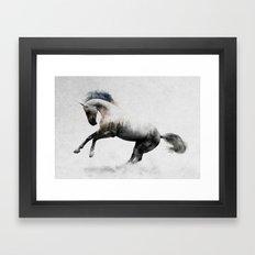 White Stallion Framed Art Print