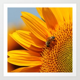 Sunflower & Bee Art Print