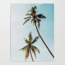 Palms, Nature, Sky, Beach, Tropical, Scandinavian, Minimal, Wall art Poster