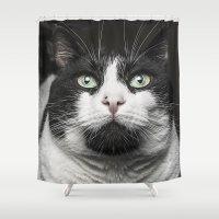 kitty Shower Curtains featuring Kitty Cat by Joao Bizarro