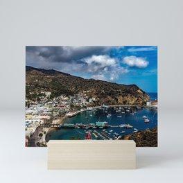 Santa Catalina Island, California color photograph / photography / photographs Mini Art Print