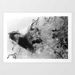 Crawlers Art Print