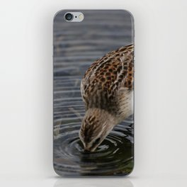 What a meal! iPhone Skin