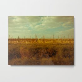 The Spring of Springs. Metal Print