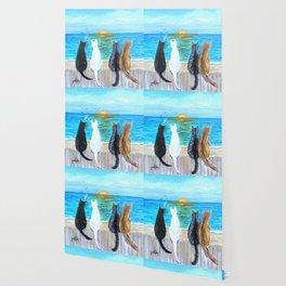 Cat Beach Sunset Wallpaper