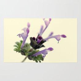 Labiate flower Rug