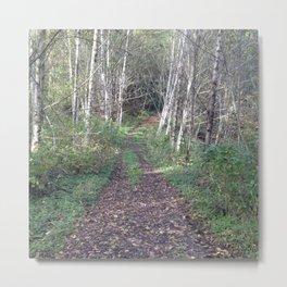 Hike Metal Print