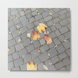 Autum leaves Metal Print