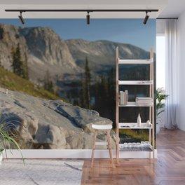 Medicine Bow Quartzite Wall Mural