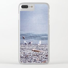 Seagulls by the Shore Clear iPhone Case