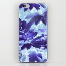 Spring 13 iPhone & iPod Skin