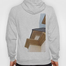 buildings in the city Hoody