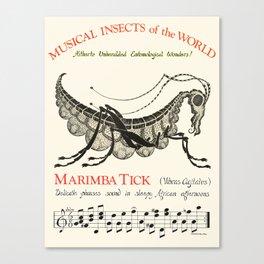 MARIMBA TICK  Vibras Agitatus   Canvas Print