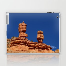 Dixie Forest Hoodoos Laptop & iPad Skin