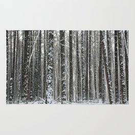 White trees-winter forest Rug