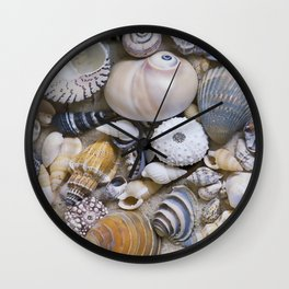 Sea Shell Collection Wall Clock