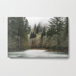 Pacific Northwest Forest River - 24/365 Metal Print