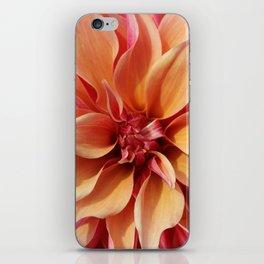 Dahlia Details iPhone Skin