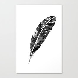 Watercolor feather Canvas Print
