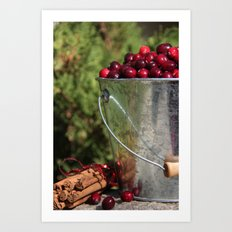 Berries and Spice Art Print