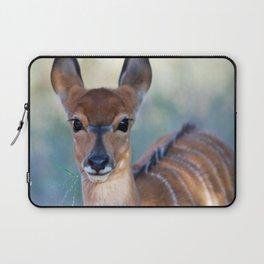 Nyala deer photo Laptop Sleeve