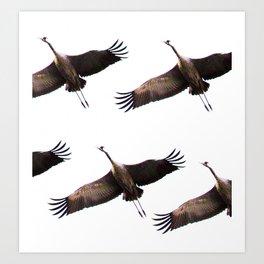 Cranes in flight #decor #society6 Art Print