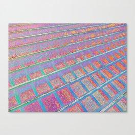 Hotblush Canvas Print