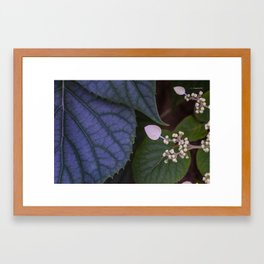 Cell by Cell Framed Art Print
