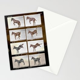 Muybridge Donkey  Stationery Cards