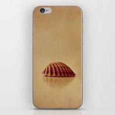 Shells iPhone & iPod Skin