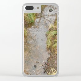 small river Clear iPhone Case
